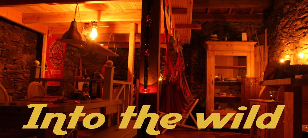 into_the_wild-2