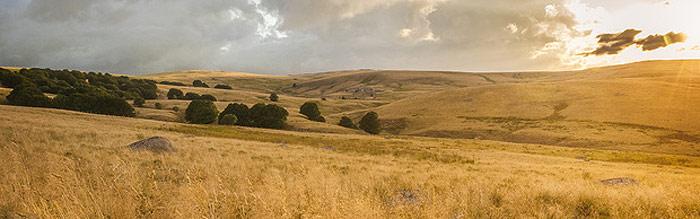 paysage de l'Aubrac avec collines